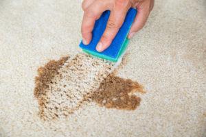 Domácí čištění koberce