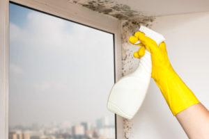 Jak dostat plíseň pryč z fasády