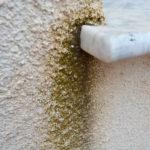 Jak odstranit vlhkost ze zdí