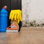 prostředky na likvidaci plísní