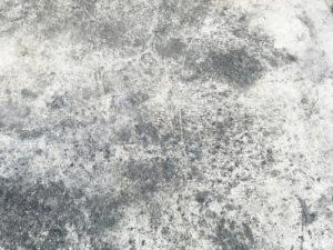 technika odstranění plísní