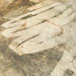 kartáčování podlahy