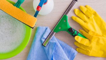 čištění zimní zahrady