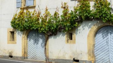 Čistění oken Brno